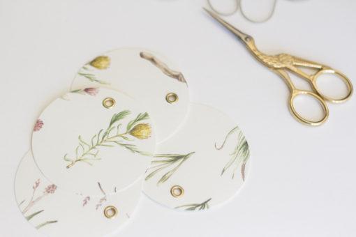 Protea-gift-tag-illustration2